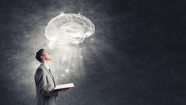 cerebro-lectura-knwb-620x349abc